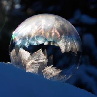 boble1_web